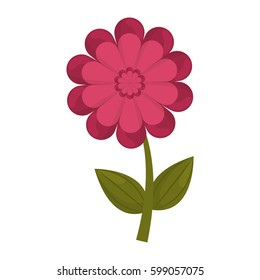 gerbera flower stem leaves vector illustration eps 10