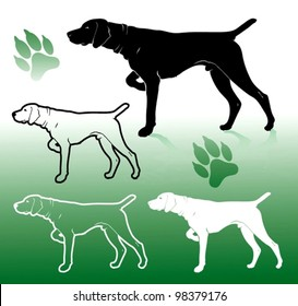German pointer dog - vector illustration