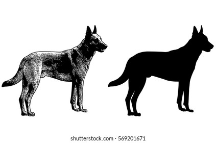 german shepherd dog silhouette and sketch illustration - vector