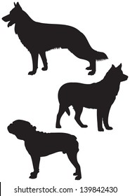 German shepherd, Husky and American Bulldog Dog breeds vector Silhouettes