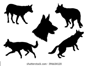 German Shepherd Silhouette Collection