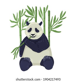 Giant adult panda sits and eats a twig, bamboo on the background. Bamboo bear. Kids drawing. Vector cartoon flat illustration
