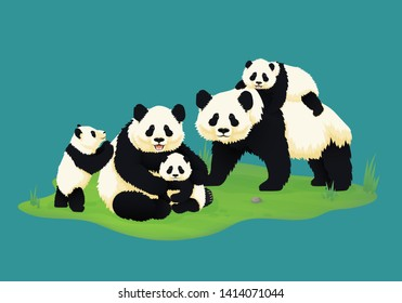 Giant panda family. Two adult pandas with three baby pandas. Chinese bears. Mother, father and children. Rare, vulnerable species.