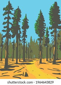 Giant Sequoias Growing in the General Grant Trail and Grove Section of the Greater Kings Canyon National Park Located in California WPA Poster Art