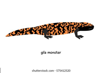 Gila monster  - colorful poisonous lizard