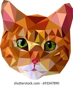 ginger cat in low poly style