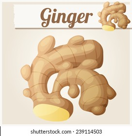 Ginger. Detailed Vector Icon. Series of food and drink and ingredients for cooking.