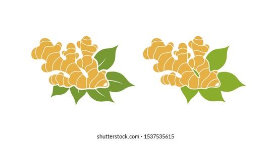Ginger. Isolated ginger on white background