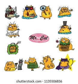 ginger red fat cat emotion stickers set