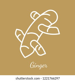 Ginger rhizome icon. Flavoring spices vector symbol.