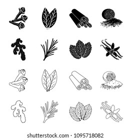 Ginger, rosemary, vanilla, mint.Herbs and spices set collection icons in black,outline style vector symbol stock illustration web.