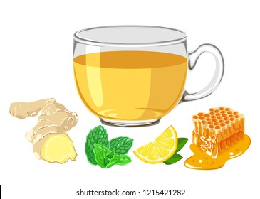 Ginger tea in glass cup isolated on white background. Ginger root, mint leaves, lemon slice, honeycomb. Vector illustration of hot drink in flat simple cartoon style.