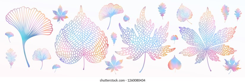 Ginkgo biloba, oak, linden, chestnut leaf set.  Vector colorful isolated and silhouette objects. Botanical multicolored holographic gradient vibrant trendy illustration