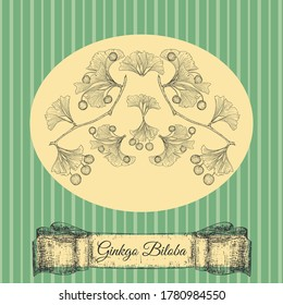 Ginkgo Biloba Plant, Leaf, Branch, Berry and Ribbon on Yellow Substrate. Striped Background in Vintage style. Hand Drawn Vector Sketch llustration. Retro Styled Card for Products with Ginkgo Biloba.