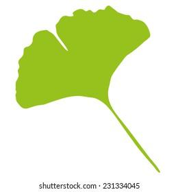 Ginkgo Biloba - Stylized Leaf of a Ginkgo Tree