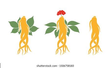 Ginseng logo. Isolated ginseng on white background. EPS 10. Vector illustration