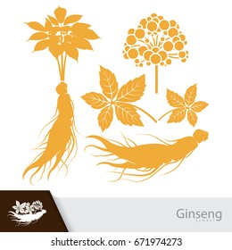 Ginseng root with leaf and flower symbol isolated on white background. Vector illustration. China herbal.