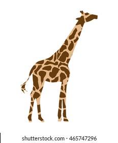 giraffe african isolated icon vector illustration design
