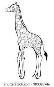 Giraffe black white isolated illustration vector