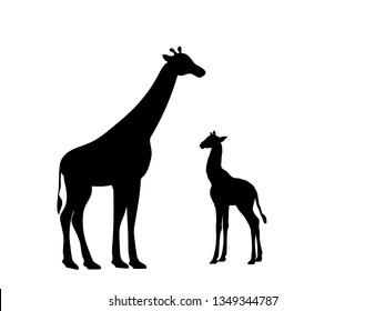 Giraffe and giraffe cub mammal silhouette animal