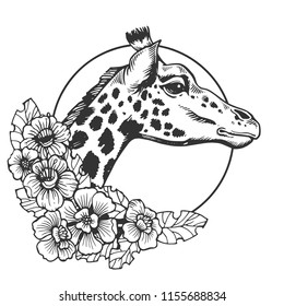 Giraffe head animal engraving vector illustration. Scratch board style imitation. Black and white hand drawn image.