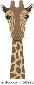 Giraffe Head Vector Illustration Isolated