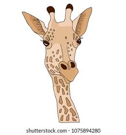 TheNicStudio | Giraffe art, Giraffe illustration, Giraffe
