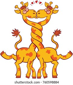 Giraffes in love, intertwining their long necks and kissing passionately. They are clenching their eyes and raising their legs and tails. Red hearts are shown above their heads