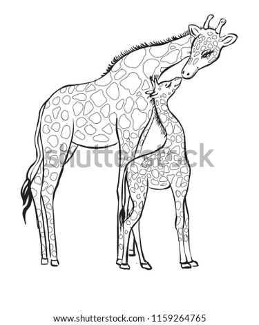 Giraffes Mother And Child Coloring Page For Kids