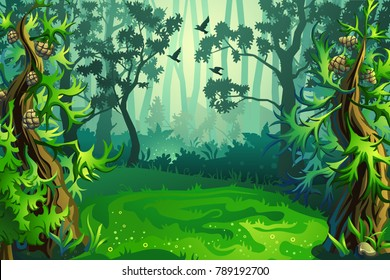 a glade in the woods, among trees and firs. Vector background.
