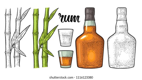 Glass and bottle of rum with sugar cane. Vintage vector color engraving illustration. Isolated on white background. Hand drawn design element for label, poster, web, invitation to party