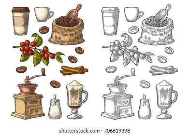 Glass latte, sack, beans, wooden scoop, hand-held coffee grinder, sugar, scoop, cinnamon stick, branch with leaf and berry. Vintage color vector engraving illustration isolated on white background