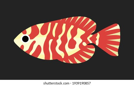 the glasseye snapper fish. collection set of coral fish illustration. the hand drawing of under the sea life. hand drawn vector animation. adorable and beautiful fishes of marine life.