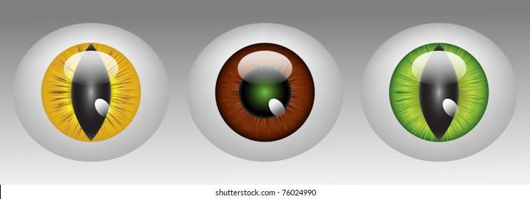 Glossy animal eyeballs in three colors EPS10