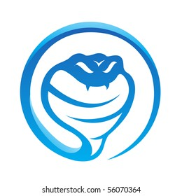 Glossy blue snake isolated on white