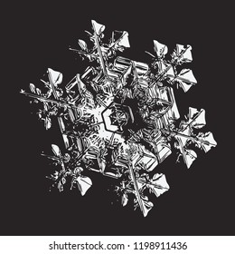 Glossy snowflake on black background. This vector illustration based on macro photo of real snow crystal: elegant star plate with hexagonal symmetry, ornate arms, relief surface and complex details.
