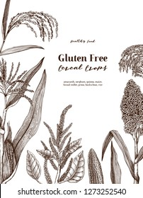 Gluten free plants design. Hand drawn cereal sketches. Detailed vegetarian food illustration. Farm market products. Great for packaging, menu, label.