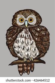 Gnome owl hand drawn