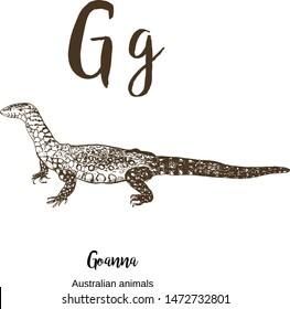 Goanna, A to z, alphabet sketch australian animals drawing vector illustration. Vintage hand drawn with lettering. Ready for print. Letter G for goanna. ABC.
