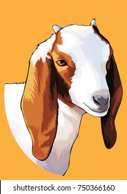 goat cute face illustration
