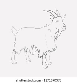 Goat icon line element. Vector illustration of goat icon line isolated on clean background for your web mobile app logo design.