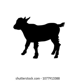 Goat kid silhouette. Vector illustration isolated on white background
