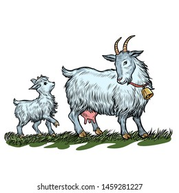 goat mother and little goat farm animals. Pop art retro vector illustration vintage kitsch 50s 60s