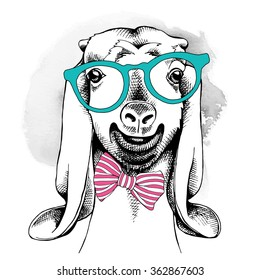 Goat portrait in a glasses with tie. Vector illustration.