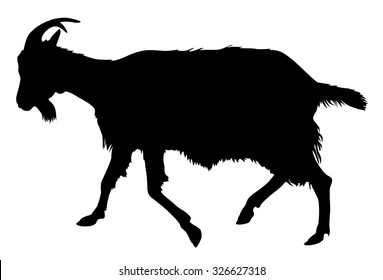 Goat silhouette Rural farm animals on a white background