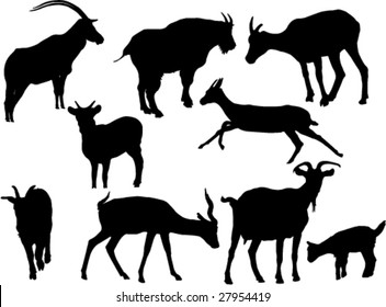 goat silhouettes- vector