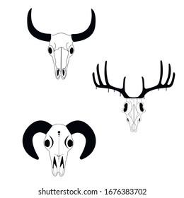 goat skull black and white vector format