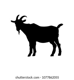 Goat standing black silhouette side view. Vector illustration isolated on white background