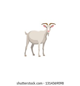 goat vector on a white background