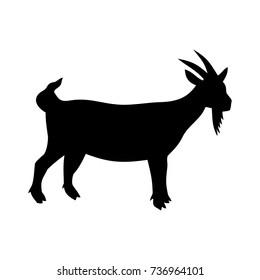 goat,vector illustration